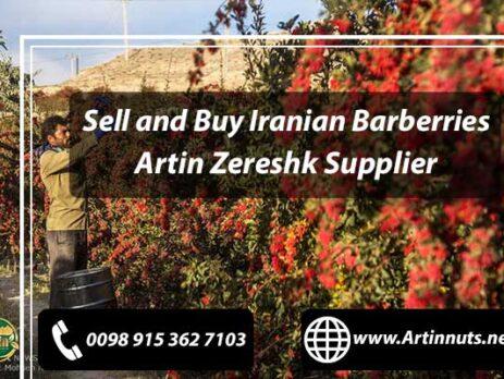Buy Iranian Barberries