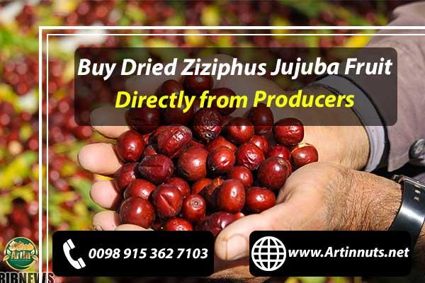 Dried Ziziphus Jujuba