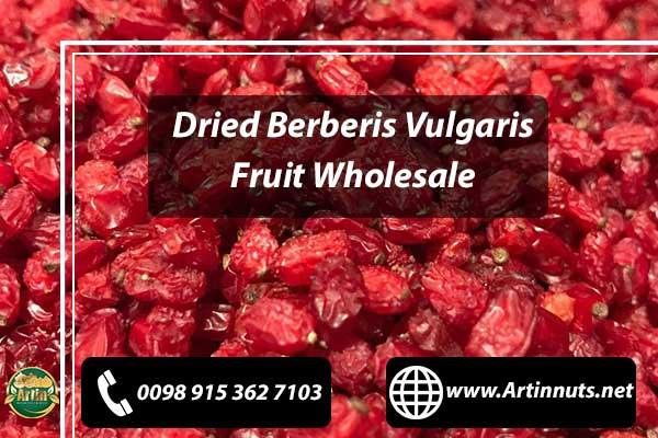 Dried Berberis Vulgaris