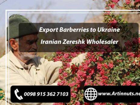 Export Barberries to Ukraine