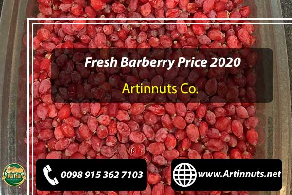 Fresh Barberry Price 2020
