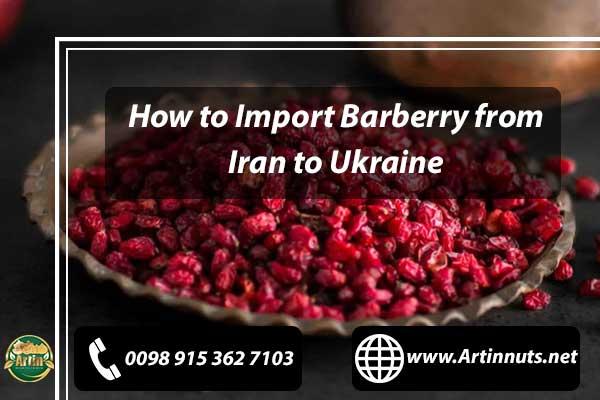 Import Barberry from Iran