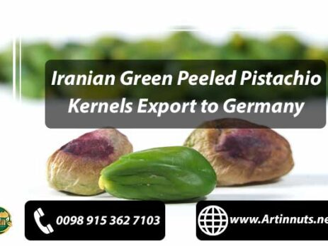 Pistachio Kernels Export to Germany