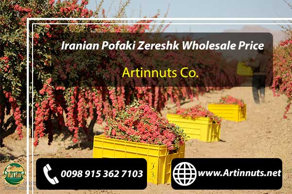 Pofaki Zereshk Wholesale