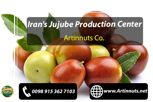 Jujube Production Center