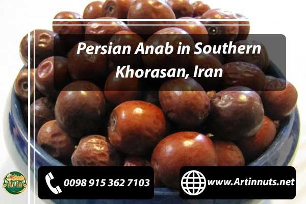 Persian Anab