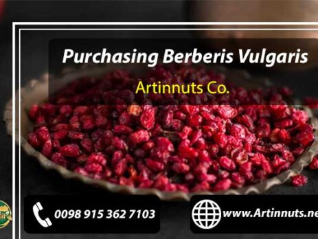 Purchasing Berberis Vulgaris