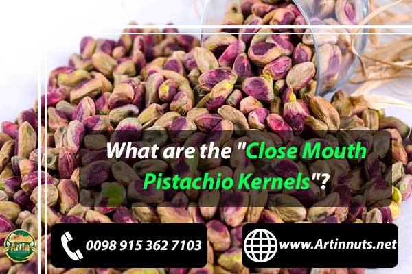 Close Mouth Pistachio Kernels