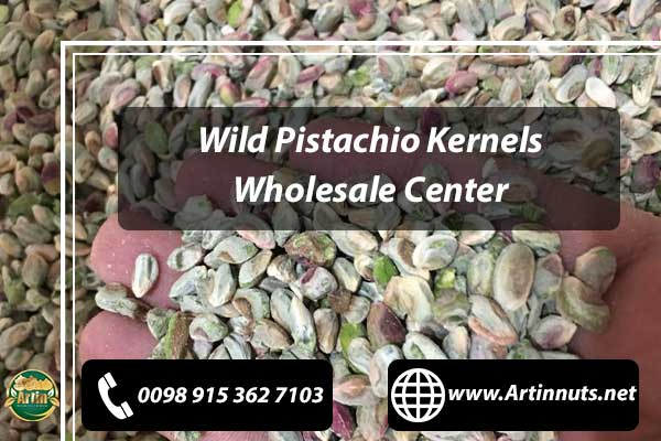 Wild Pistachio Wholesale