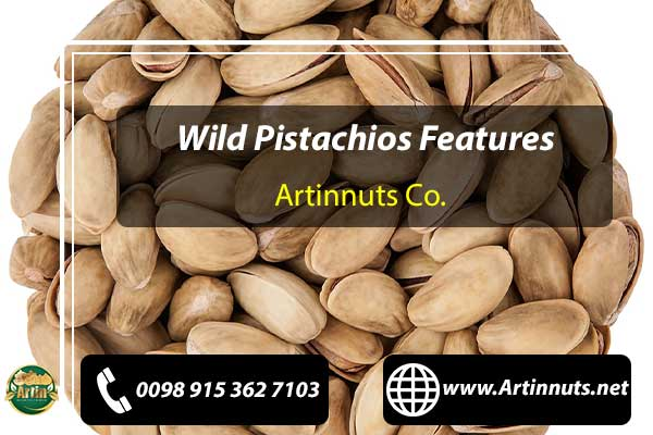 Wild Pistachios Features