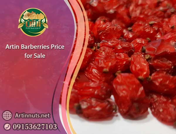 Artin Barberries Price