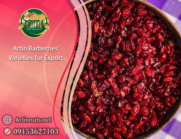 Artin Barberries Varieties