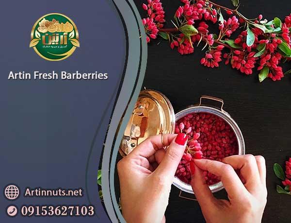 Artin Fresh Barberries