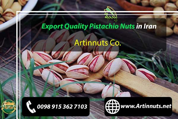 Export Quality Pistachio Nuts