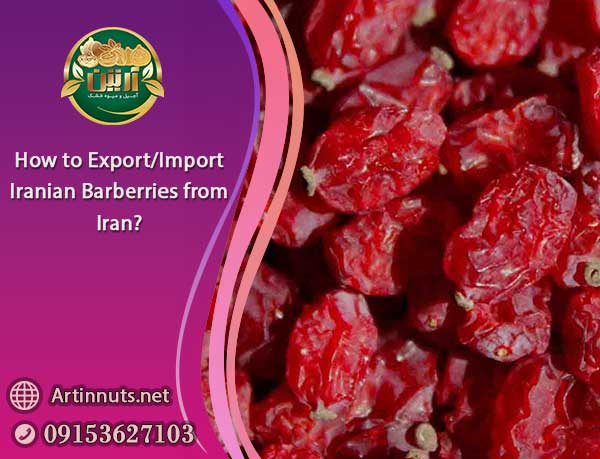 Import Iranian Barberries