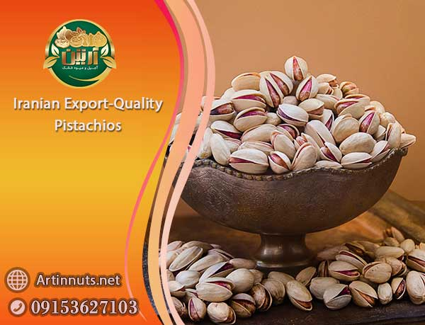 Export-Quality Pistachios