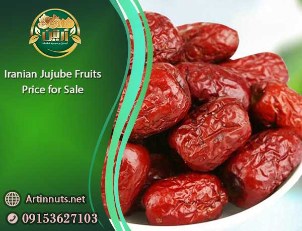 Jujube Fruits Price