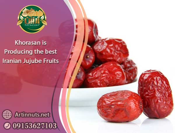 Iranian Jujube Fruits