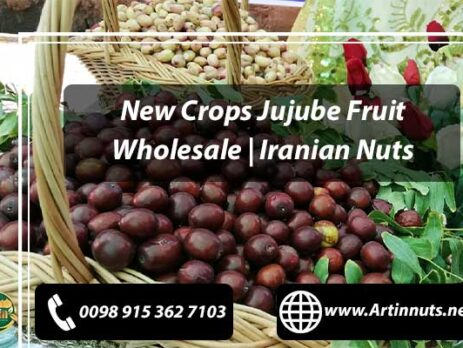 New Crops Jujube Fruit