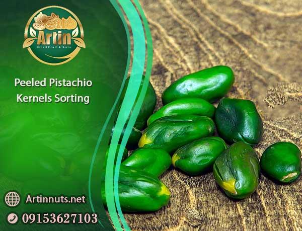 Peeled Pistachio Kernels Sorting