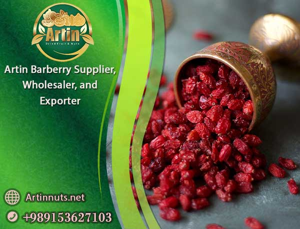 Artin Barberry Supplier Exporter Wholesaler