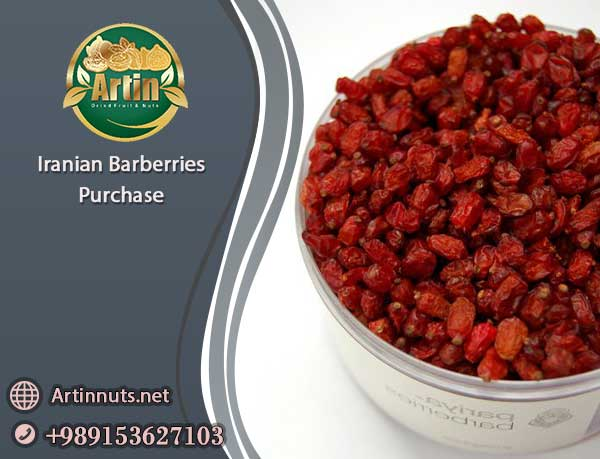 Iranian Barberries Purchase