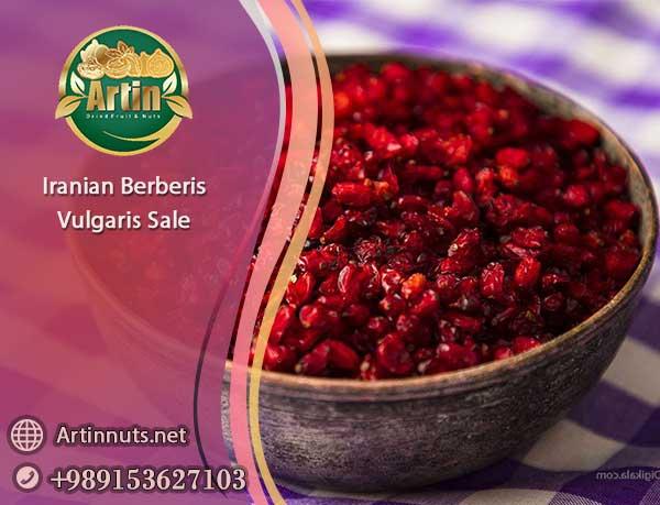 Iranian Berberis Vulgaris Sale