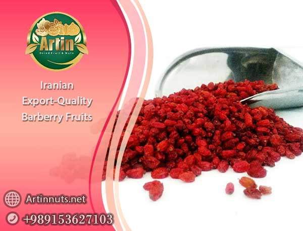 Export-Quality Barberry Fruits