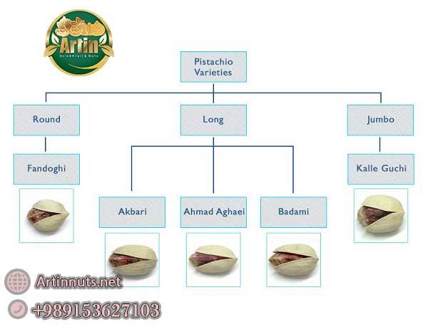 Pistachio Worldwide Varieties