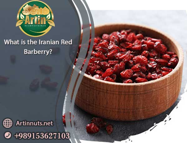 Iranian Red Barberry