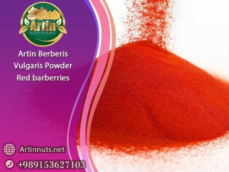 Artin Berberis Vulgaris Powder