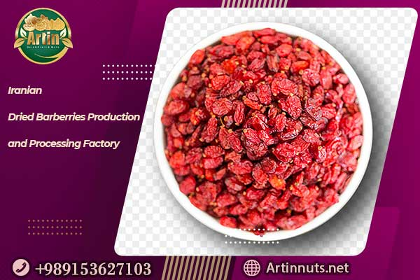 Iranian Dried Barberries Production