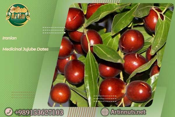 Iranian Medicinal Jujube Dates