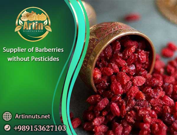 Barberries without Pesticides