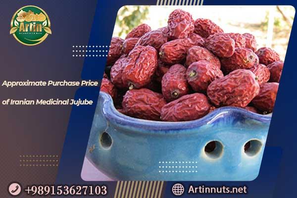 Iranian Medicinal Jujube