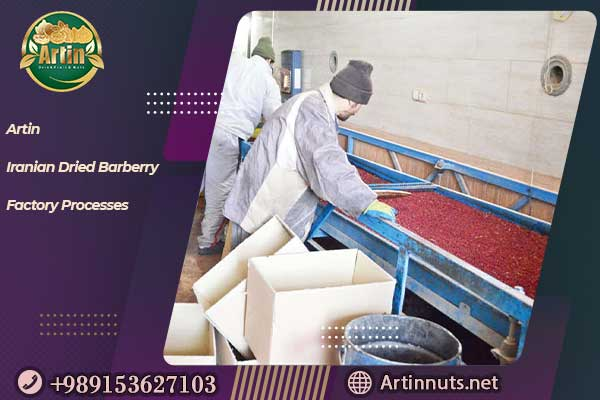 Iranian Dried Barberry Factory