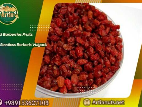 Dried Barberries Fruits