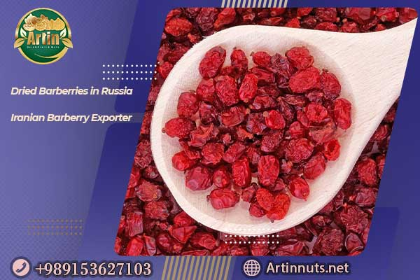 Dried Barberries in Russia
