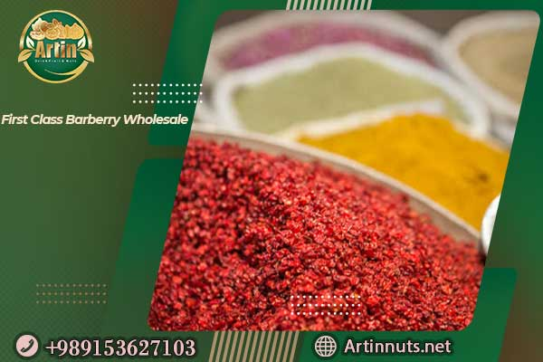 First Class Barberry Wholesale