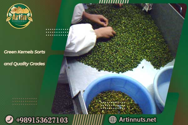 Green Kernels Sorts