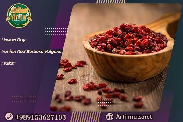 Iranian Red Berberis Vulgaris Fruit