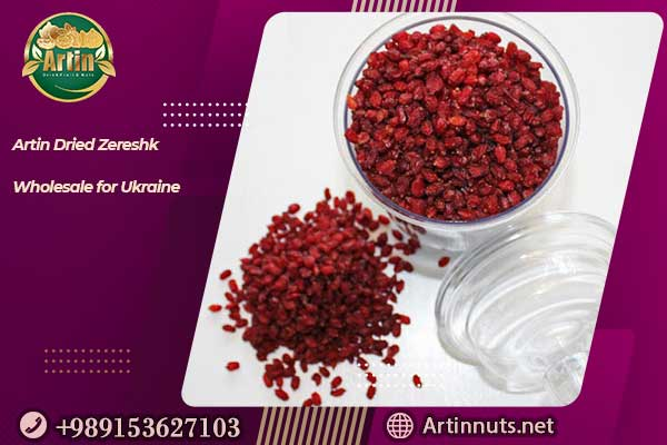 Artin Dried Zereshk Wholesale