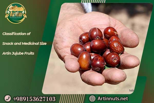 Artin Jujube Fruits