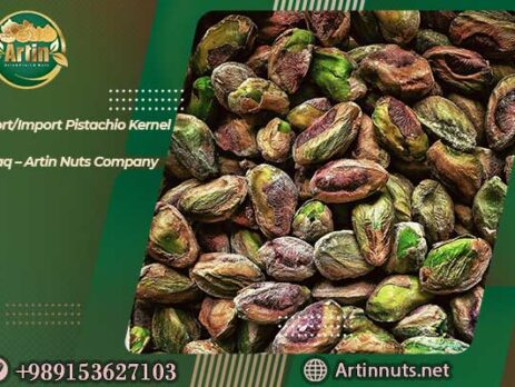 Pistachio Kernel to Iraq