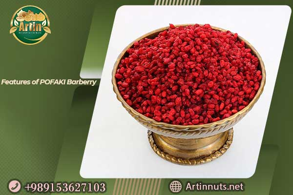 Features of POFAKI Barberry