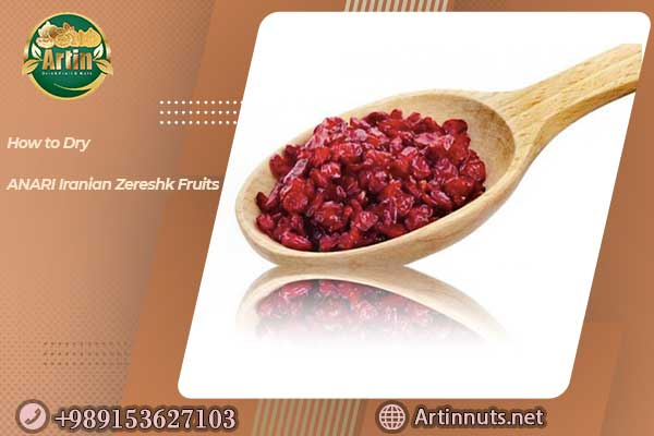 ANARI Iranian Zereshk Fruits