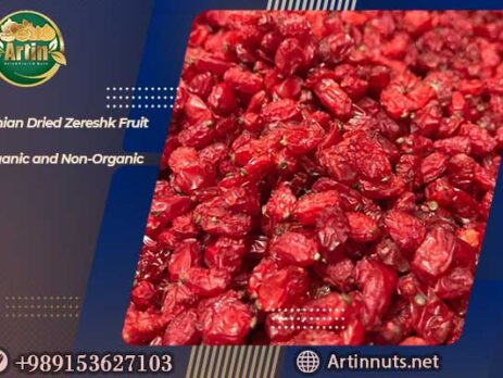 Iranian Dried Zereshk Fruit