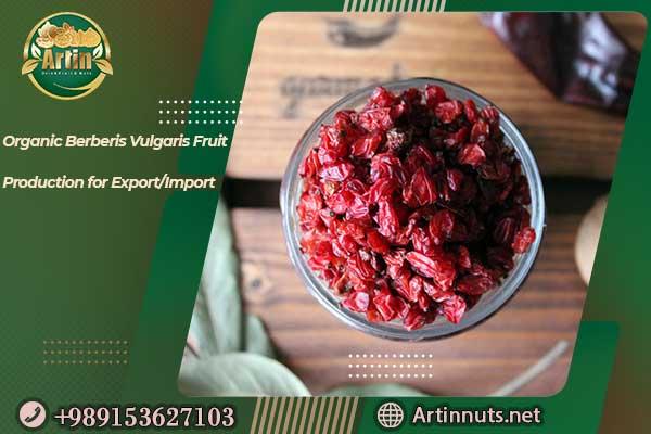 Organic Berberis Vulgaris Fruit