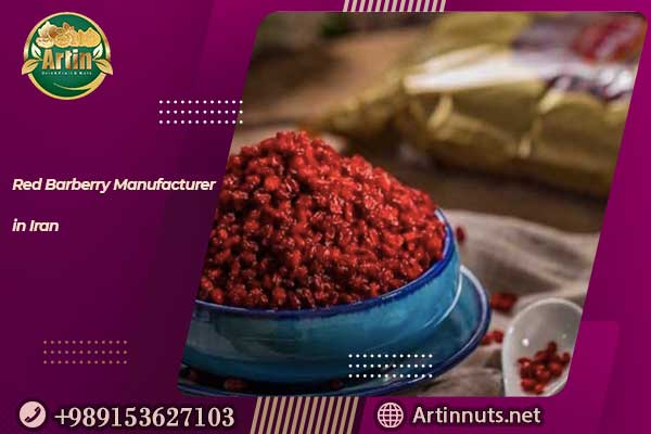Red Barberry Manufacturer