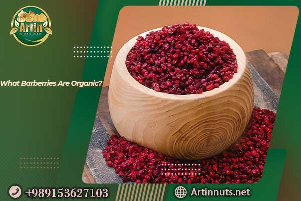 organic barberries